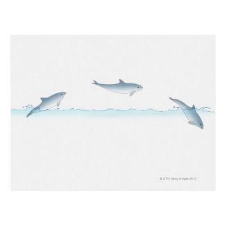 Springen des Delphins Postkarte