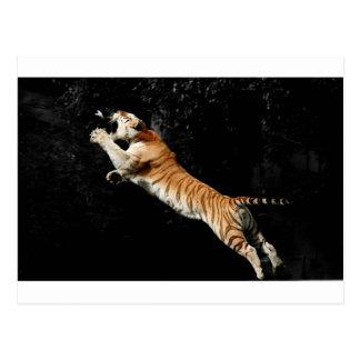 Springen des Tiger-fantastischen Fotos Postkarte