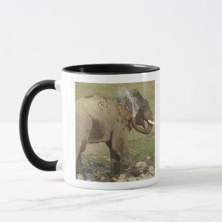 Sprühwasser des indischen/asiatischen Elefanten, Tasse