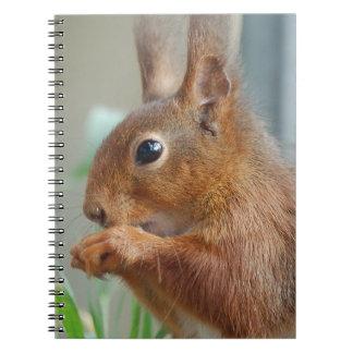 Squirrel ~ Écureuil ~ Eichhörnchen  ~ by GLINEUR Spiralblock