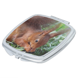 Squirrel ~ Écureuil ~ Eichhörnchen ~ by JL GLINEUR Taschenspiegel
