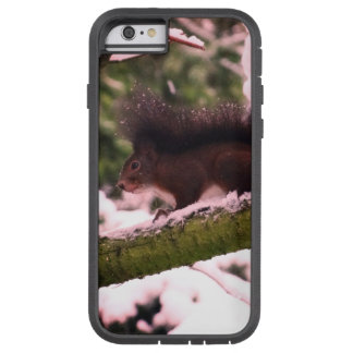 Squirrel Winter-Foto iPhone 6/6s, starkes Xtreme Tough Xtreme iPhone 6 Hülle