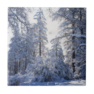 Staatlicher Wald Kaliforniens, Cleveland, Laguna 1 Keramikfliese