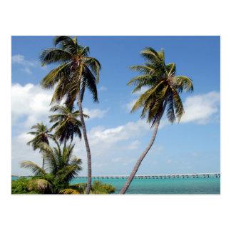 Staats-Park-Florida-Schlüssel Bahias Honda Postkarte