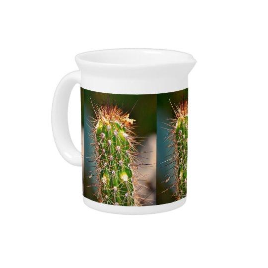 Stacheliger Kaktus-Krug Krug