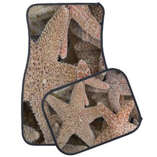 Starfish ganz herum autofußmatte