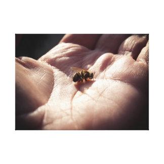 Sterbende Bienen Leinwanddruck