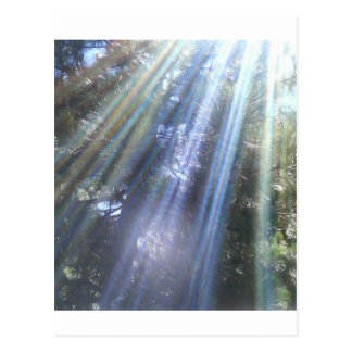 Strahlen des Sonnengotts durch Bernadette Postkarte