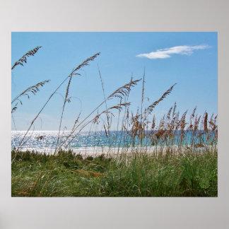 Strand-und Seehafer Poster
