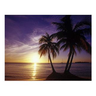 Strände bei Negril, Jamaika 3 Postkarte