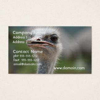 Strauß-Vogel Visitenkarte