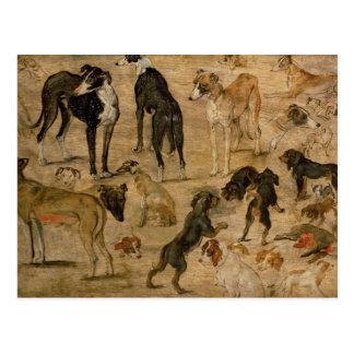 Studie der Jagdhunde, 1616 Postkarte