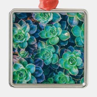 Succulents, Succulent, Kaktus, Kakteen, Grün, Quadratisches Silberfarbenes Ornament
