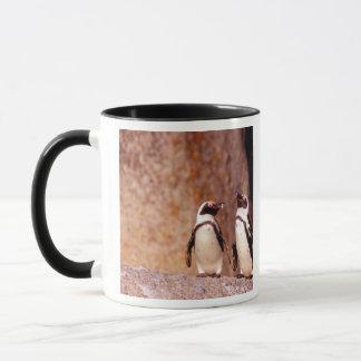 Südafrika, Simons Stadt. Esel-Pinguine 3 Tasse