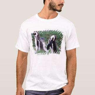 Südafrika, Simons Stadt. Pflegenesel T-Shirt