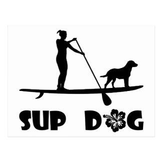 SUP Hund stehend Postkarte