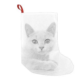 SUPER NIEDLICHES Kätzchen-Porträt Kleiner Weihnachtsstrumpf