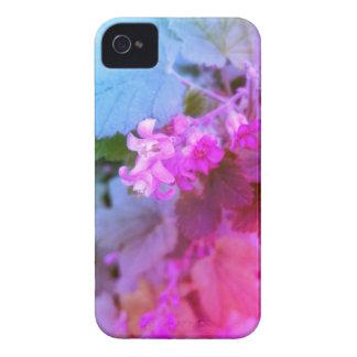 süßer iPhone/iPad Fall Case-Mate iPhone 4 Hüllen