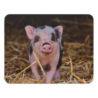 Süßes niedliches Schwein Türschild