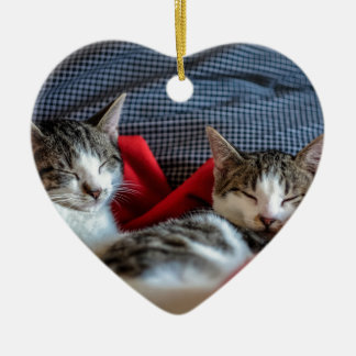Süßes Schlafen Kätzchen Keramik Ornament