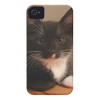 Süßes Schwarzweiss-Kätzchen, das SIE betrachtet iPhone 4 Case-Mate Hülle