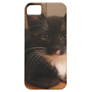 Süßes Schwarzweiss-Kätzchen, das SIE betrachtet iPhone 5 Case
