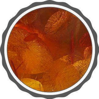 Elegant amber pattern