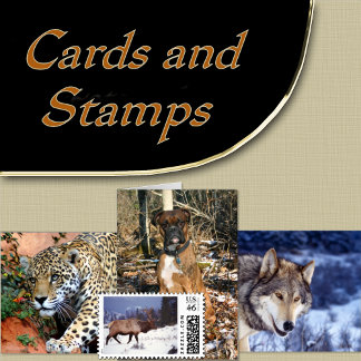 7. CARDS - STAMPS