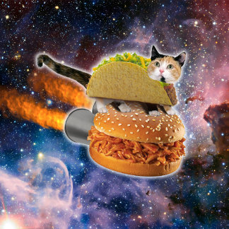 taco cat and rocket hamburger in the universe