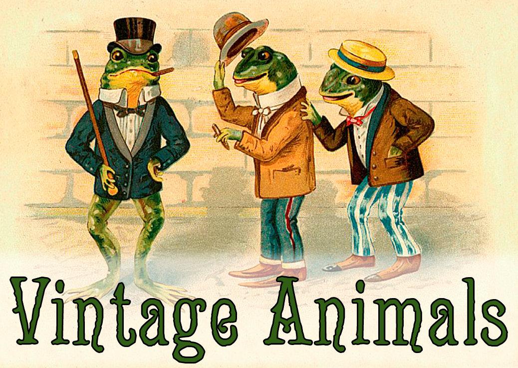 Vintage Animals