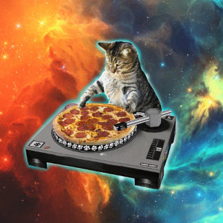 Cat dj with disc jockey's sound table