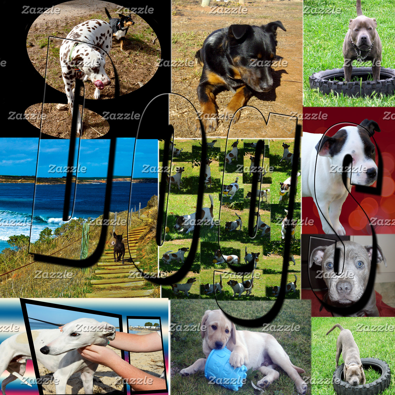 Dogs, Staffy, Fox Terrier, Dalmatian, Products.