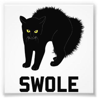 Swole Katze ist Kätzchen Swole Kunstphoto