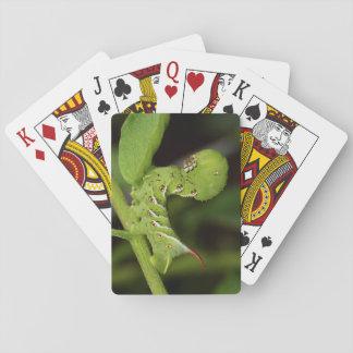 Tabak Hornworm Raupen-Spielkarten Spielkarten