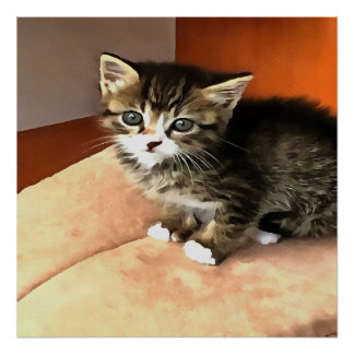 Tabby-Kätzchen genanntes Fräulein Pip Squeak Poster