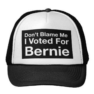 Tadeln Sie mich nicht, den ich für Bernie wählte Kappe