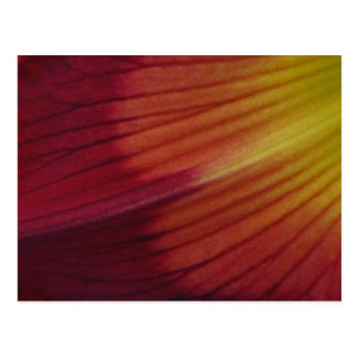 Taglilie-Wasserzeichen abstrakt Postkarten