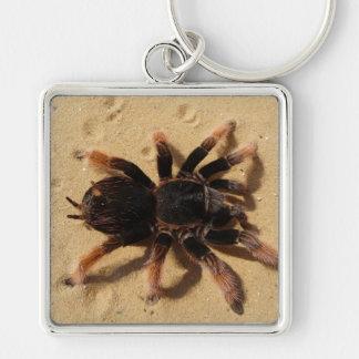Tarantula-Foto Schlüsselanhänger