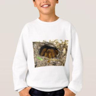 Tarantula-Unterschlupf Sweatshirt