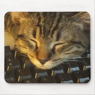 Tastatur-Miezekatze-Mausunterlage Mauspads