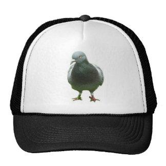 Taube auf einem Hut Trucker Kappe