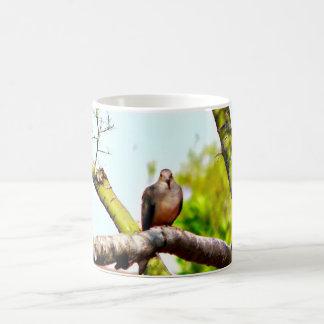 Tauben auf einer Glied-klassischen Kaffeetasse