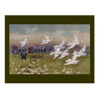 Tauben im Flug Vintages Ostern Postkarten