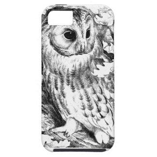Tawny Eule iPhone 5 Schutzhüllen