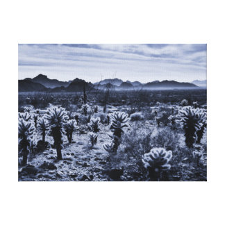 Teddy-Bär Cholla Kaktus-Wüsten-Pflanzen Leinwanddruck