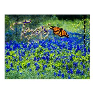 Texas-Staats-Blume - Bluebonnets Postkarte