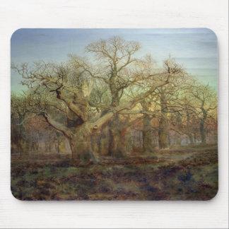 The Edge von Sherwood Forest, 1878 Mauspads