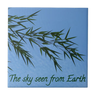 the sky seen from earth fliese