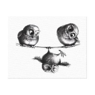 Three Owls - Freedom and Fun Leinwand Drucke