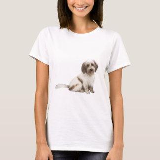 Tibetanischer Spaniel (braun-weiß) T-Shirt